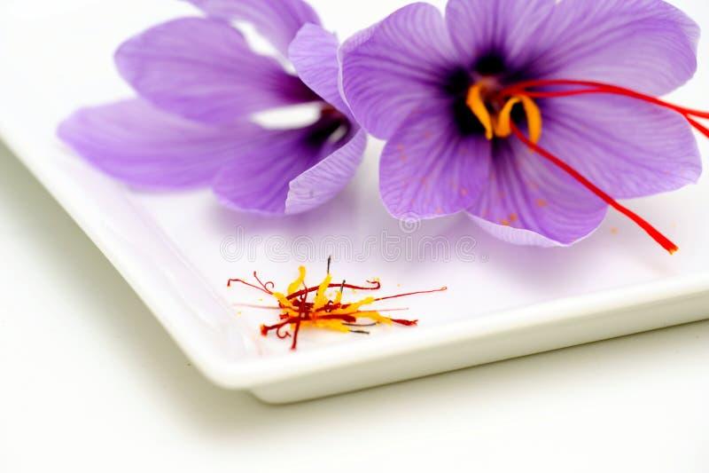 De Bloemen en Stamens van de saffraan stock afbeeldingen