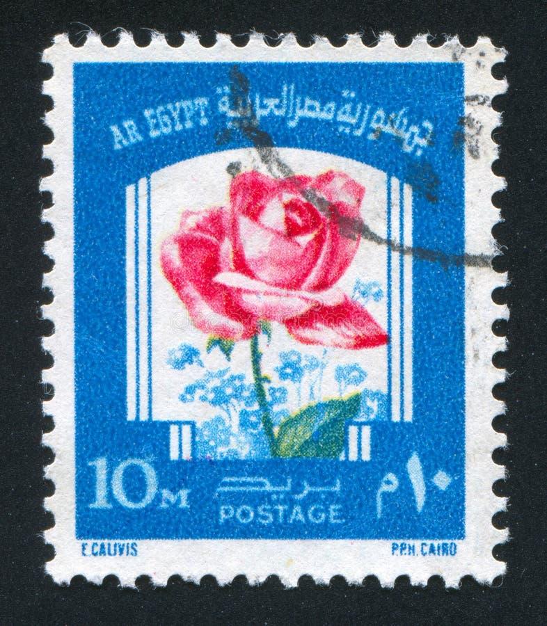 De bloemen namen toe royalty-vrije stock afbeelding