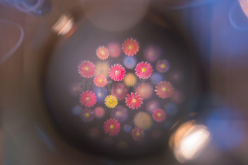 De bloemen onder microscoopmening, weefsel tonen van actief het verdelen van cellen royalty-vrije stock foto