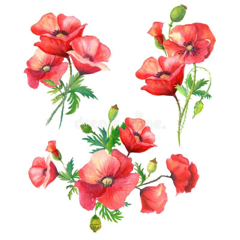De bloemen van de boekettenwaterverf stock afbeeldingen