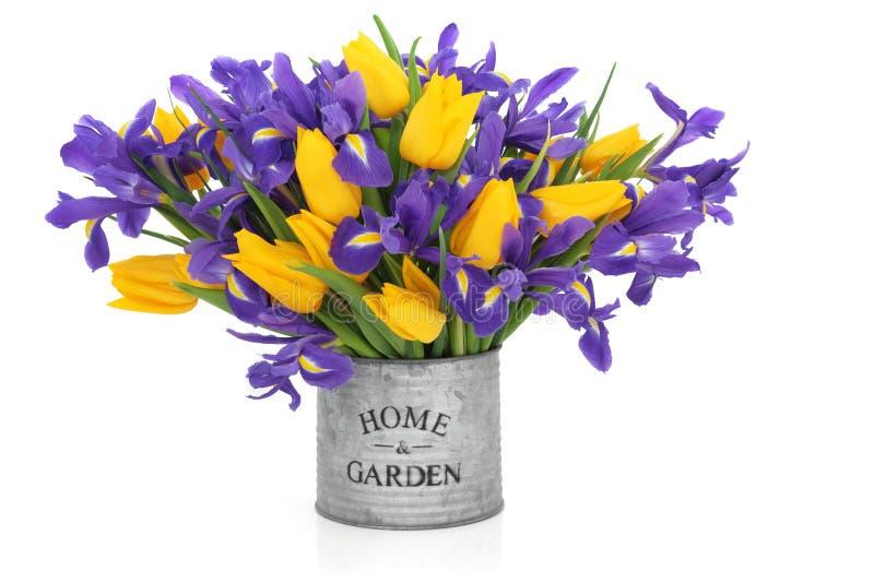 De Bloemen van de iris en van de Tulp stock foto's