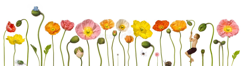 De Bloemen van de lente met Kind royalty-vrije illustratie