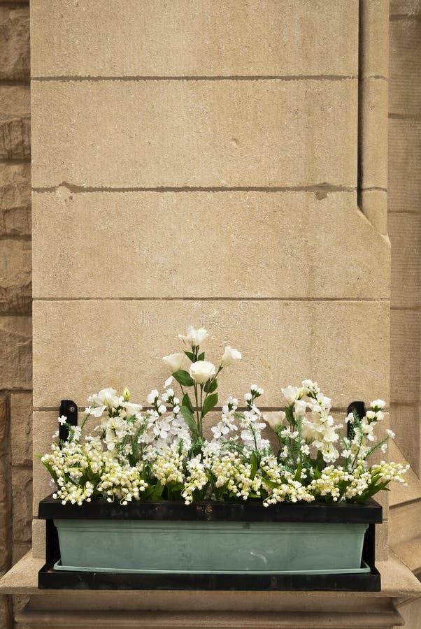 De Bloemen van de muur royalty-vrije stock afbeeldingen