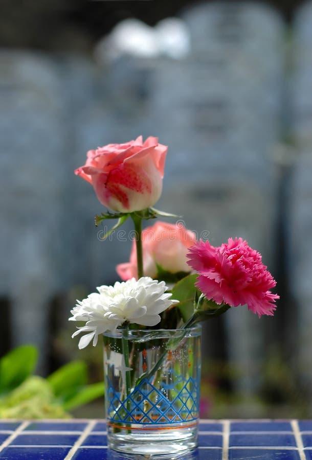 Ochtendbloemen Gratis Stock Afbeeldingen