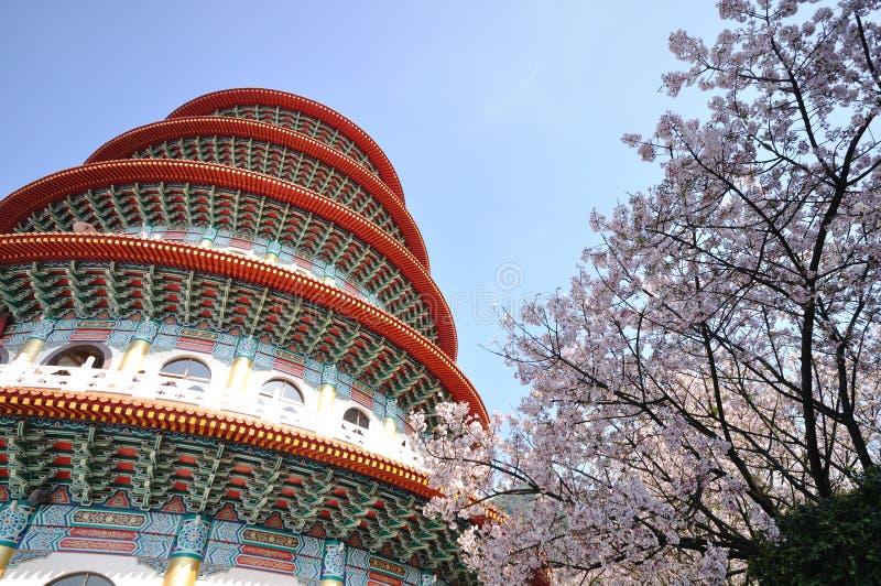 De bloemen van de pagode en van de pruim royalty-vrije stock afbeeldingen