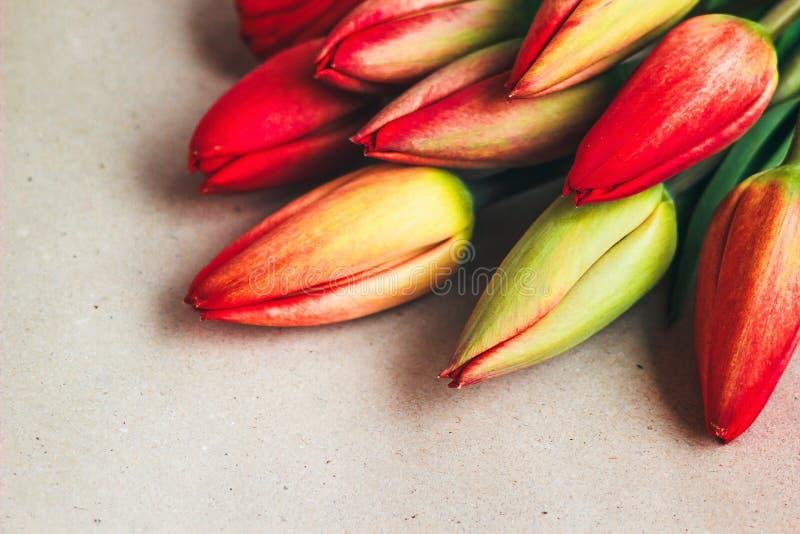 De bloemen van de tulpenlente Verse tulpeninstallaties op uitstekende achtergrond Plattelandsaard De lentefoto, uitnodiging, pren royalty-vrije stock afbeelding