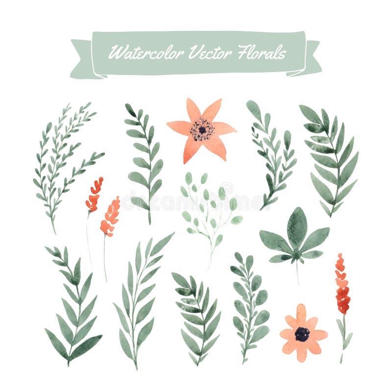 De bloemen van de waterverf vector illustratie