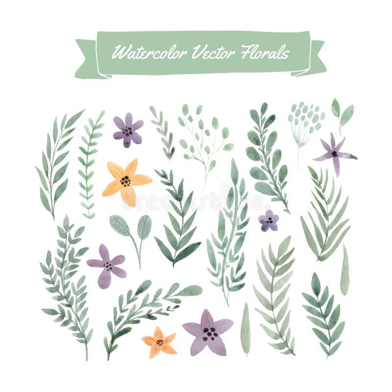 De bloemen van de waterverf royalty-vrije illustratie