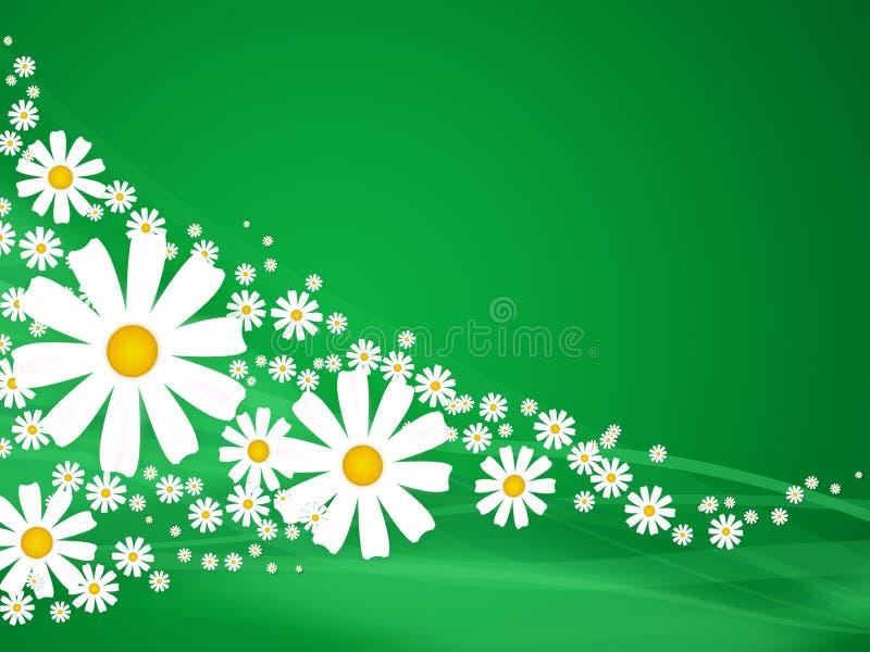 De bloemen van de zomer op groen royalty-vrije illustratie