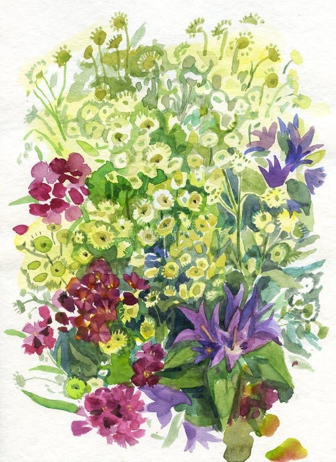 De bloemen van de zomer. Waterverf. stock illustratie