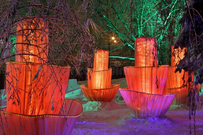 De bloemen van Fairytale op sneeuw onder bomen stock afbeeldingen