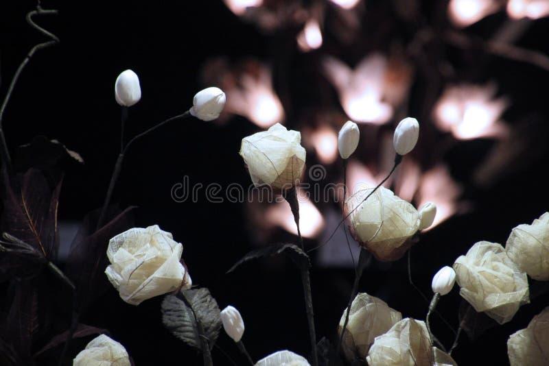 De bloemen van het document stock foto's