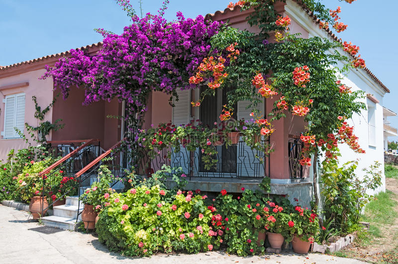 De bloemen van het huis royalty-vrije stock fotografie