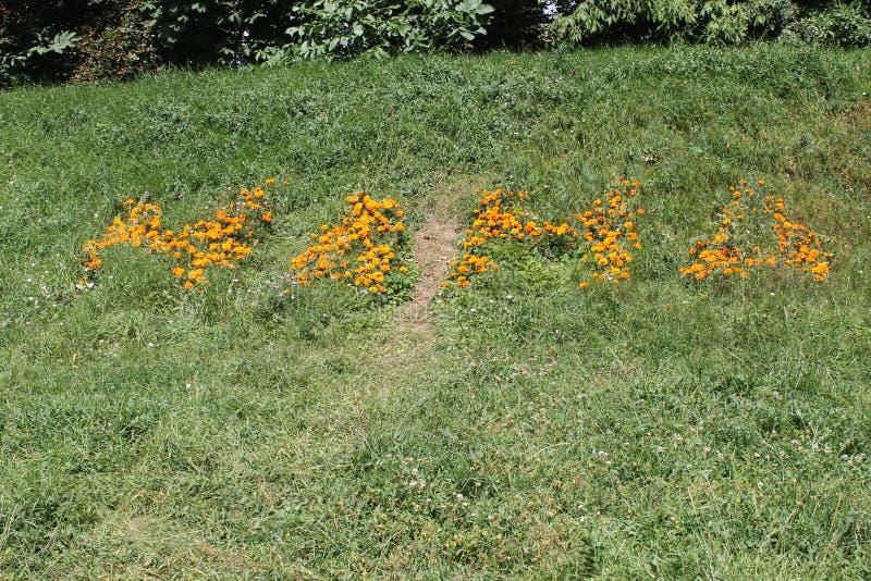 De bloemen van het inschrijvingsmamma stock afbeelding