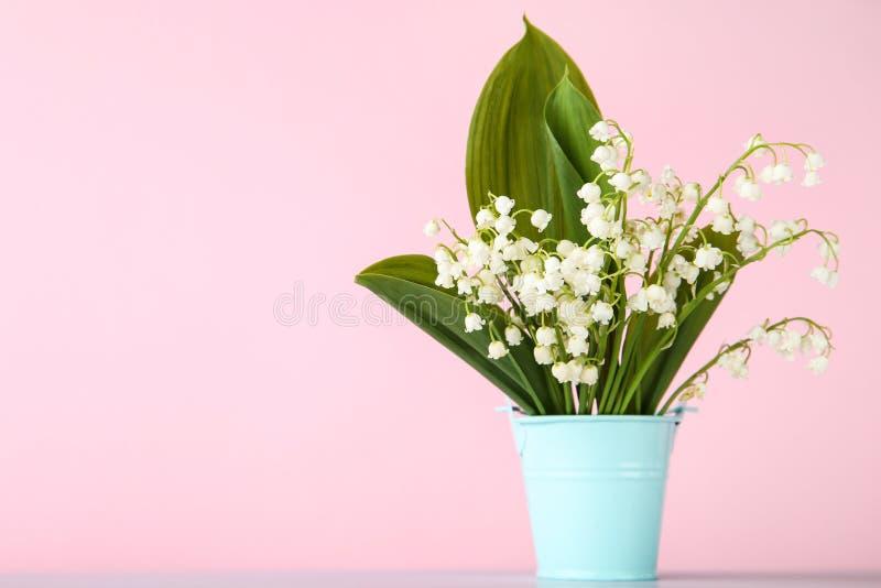 De bloemen van het lelietje-van-dalen royalty-vrije stock foto's