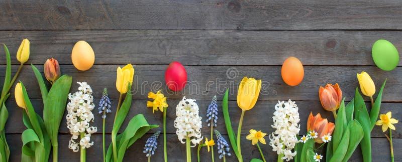 De bloemen van de lente en kleurrijke Paaseieren royalty-vrije stock afbeelding