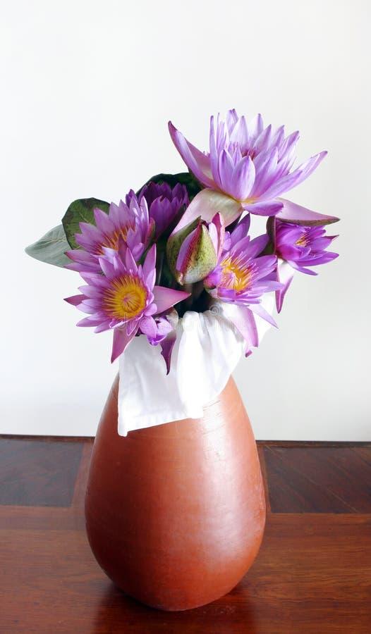 De bloemen van Lotus stock fotografie