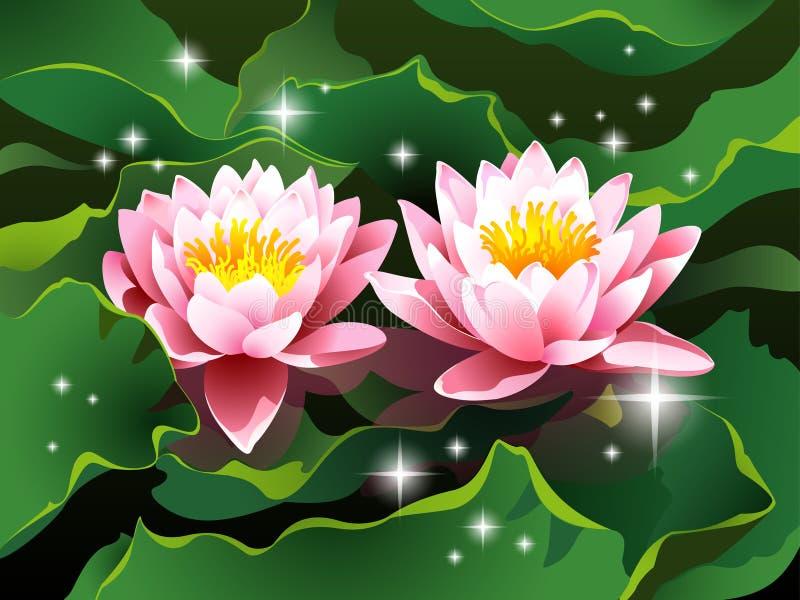 De bloemen van Lotus op water en glanzende sterren royalty-vrije illustratie