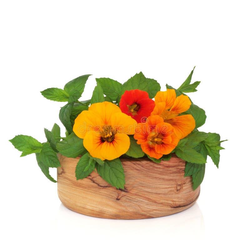 De Bloemen van Nasturtian en het Kruid van de Munt stock foto