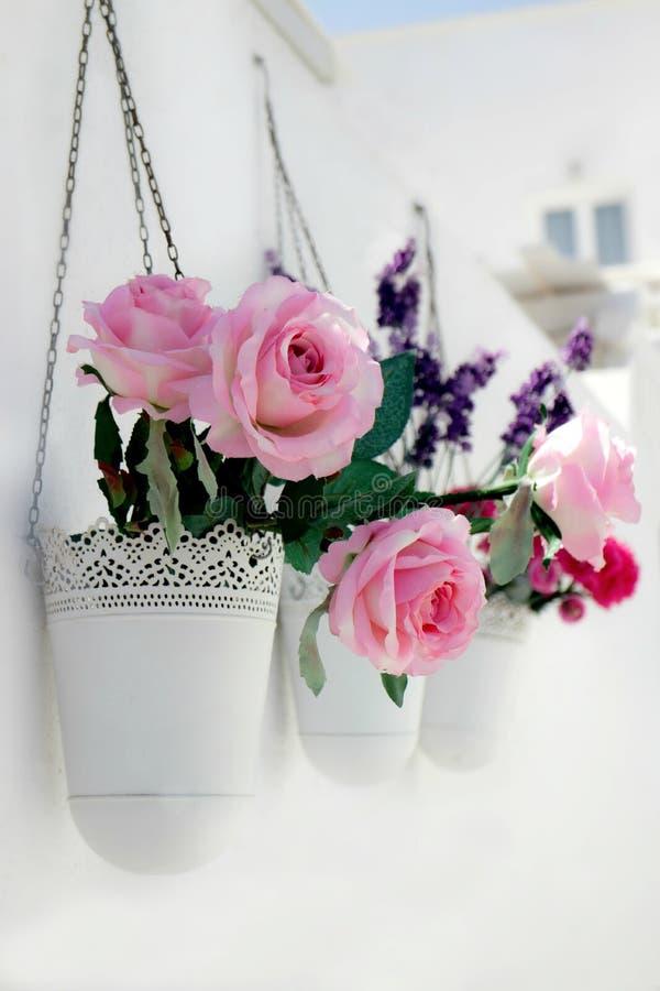De bloemen van Santorini stock foto's