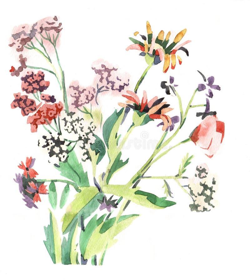 De bloemen van Watercolour royalty-vrije illustratie