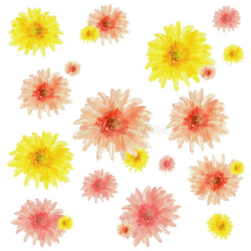 De bloemen van waterverfgerbera royalty-vrije stock afbeeldingen