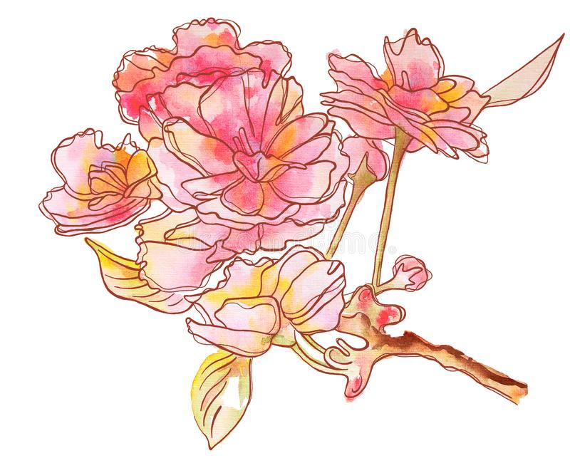 De bloemen van Weding Gevoelige bloemen op de tak vector illustratie
