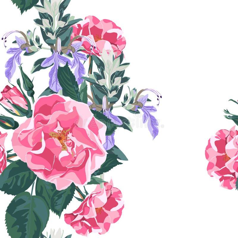 De in bloemenachtergrond met wildernis nam toe, rosa nam de caninahond tuinbloemen toe Hand getrokken stijl op witte achtergrond royalty-vrije illustratie