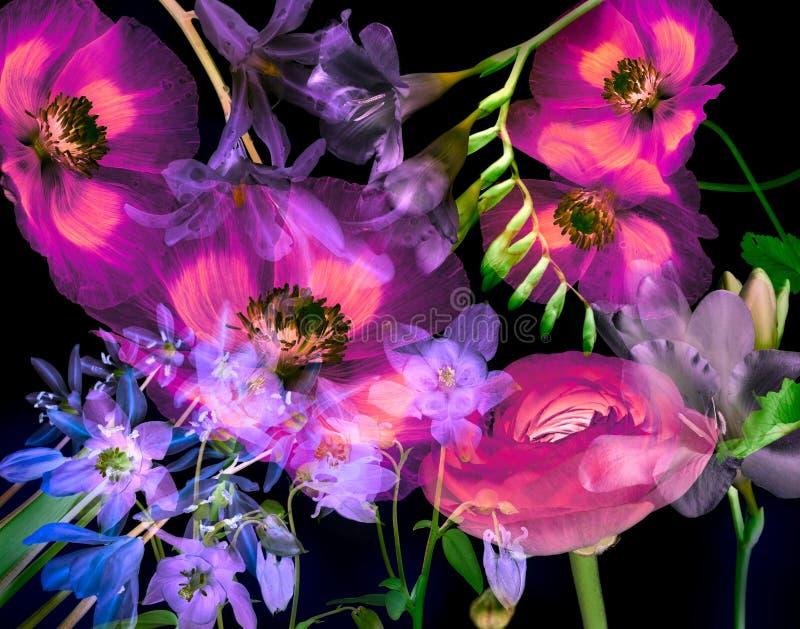 De bloemenachtergrond van de kunst royalty-vrije illustratie