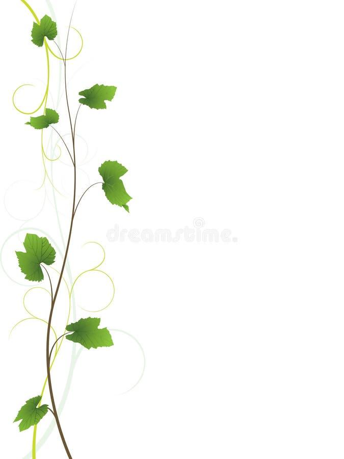 De bloemenachtergrond van de wijnstok stock illustratie