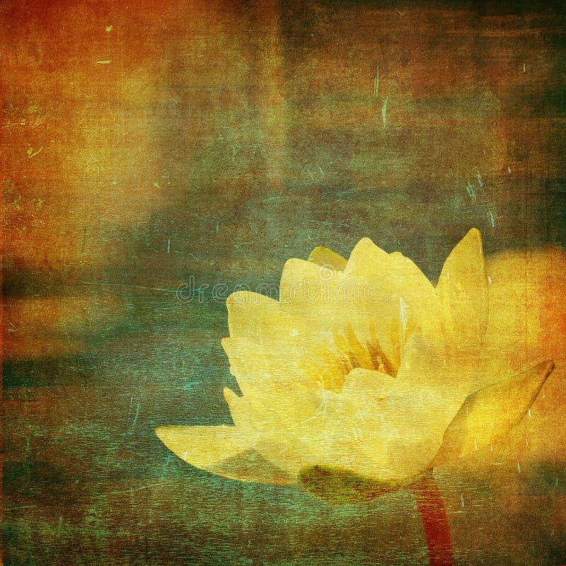 De bloemenachtergrond van Grunge met ruimte voor tekst of im stock illustratie