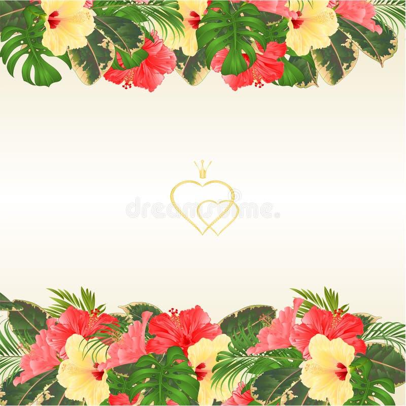 De bloemengrens met bloeiende diverse hibiscus en de tropische bladeren vectorillustratie bloeien achtergrond met plaats voor uw  royalty-vrije illustratie