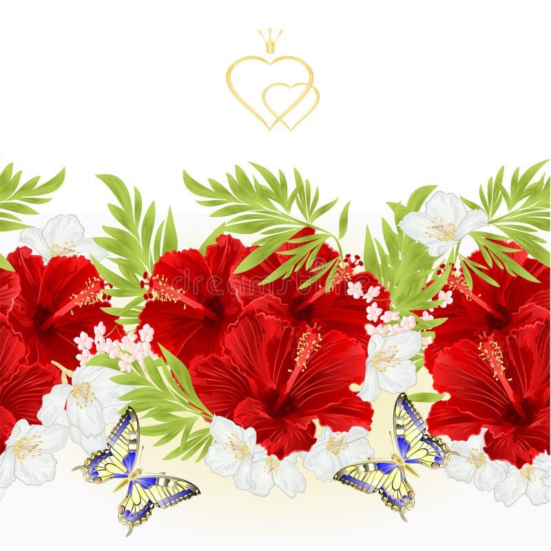 De bloemengrens naadloze achtergrond rode hibiscus tropische bloemen met jasmijn bloeit en vlinder uitstekende vectorillustratie  vector illustratie