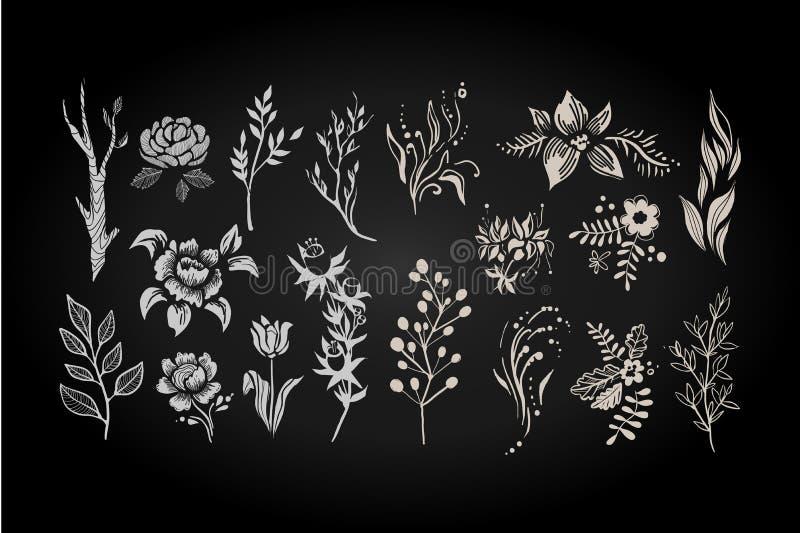 De bloemenreeks, grafische inzameling met wit verlaat en bloeit elementen vectorillustratie stock illustratie