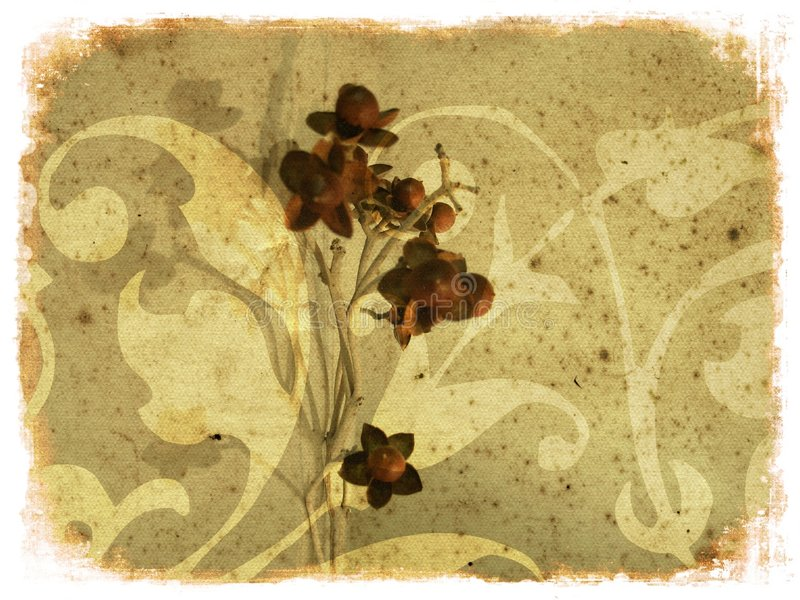 De bloemensamenstelling van Grunge stock illustratie