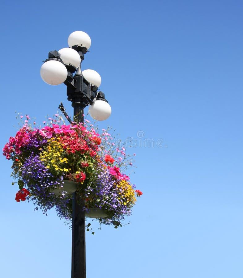 De bloemmanden van de zomer royalty-vrije stock afbeeldingen