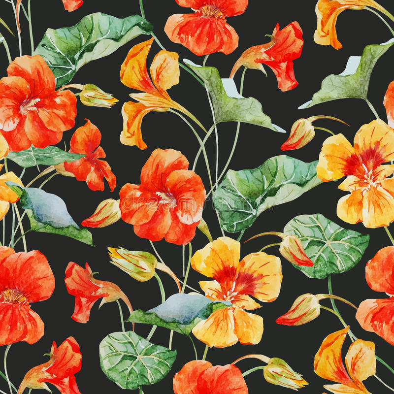 De bloempatroon van de waterverfoostindische kers stock illustratie