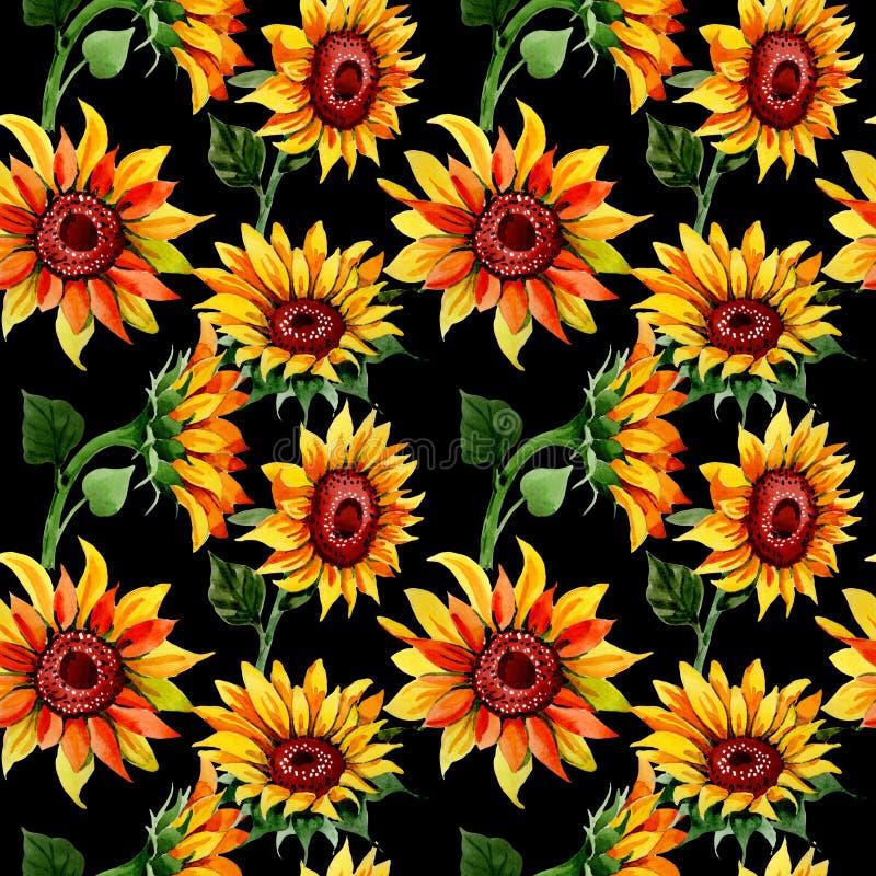 De bloempatroon van de Wildflowerzonnebloem in een waterverfstijl stock illustratie