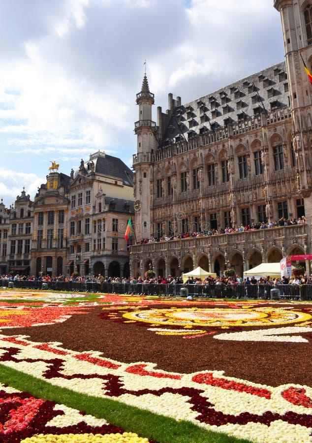 De bloemtapijt van Brussel Grand Place van verse bloembollen die wordt gemaakt royalty-vrije stock afbeelding