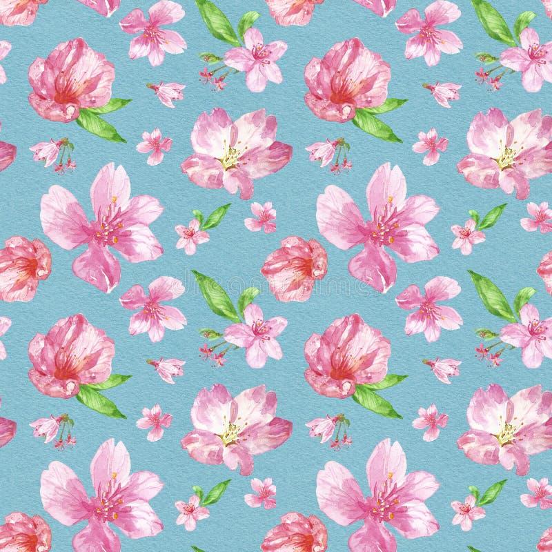 De bloesem naadloos patroon van de waterverfkers de hand schilderde roze bloemen van sacuraboom op blauwe geweven achtergrond bot vector illustratie