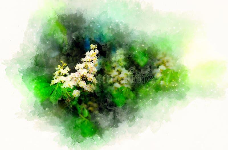De bloesem van Aesculushippocastanum van paardekastanjeboom kastanjebloem en zacht vage waterverfachtergrond stock illustratie