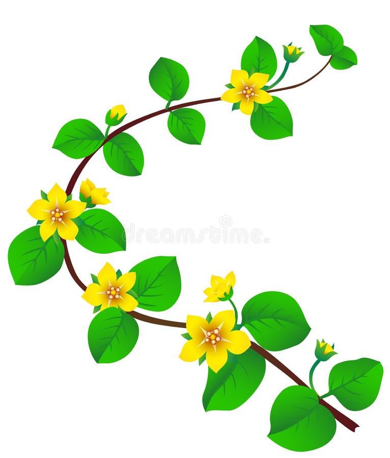 De bloesem van de lente vector illustratie