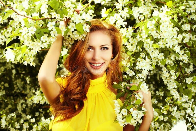 De Bloesem van de lente stock afbeeldingen
