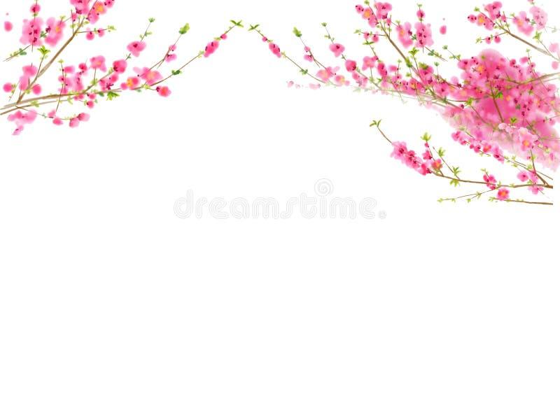 De bloesem van de perzik of van de Kers in de lentetijd royalty-vrije illustratie