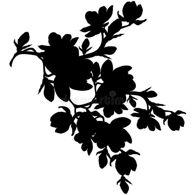 De bloesem van de de magnoliabloem van de silhouettak Vector illustratie vector illustratie