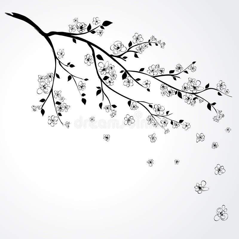 De bloesem van Sakura stock illustratie