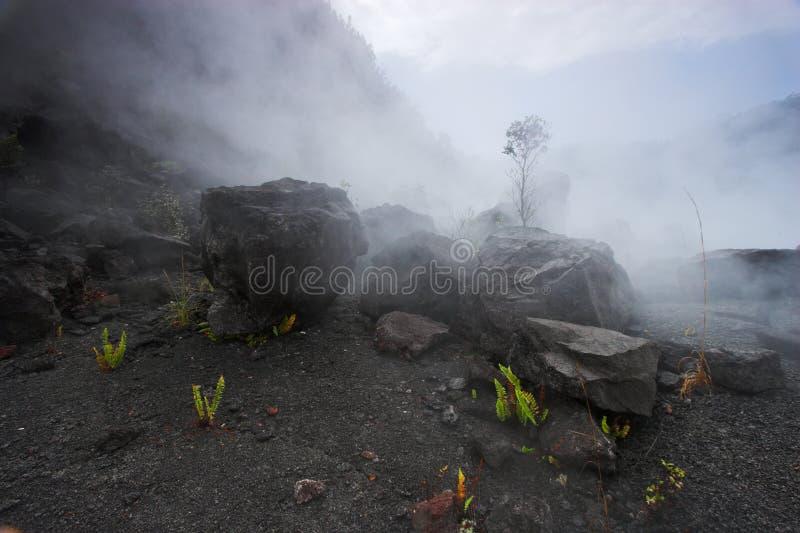 De bodem van de krater stock foto's