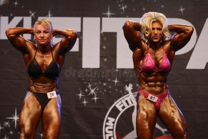 De bodybuilders van Feemale royalty-vrije stock foto