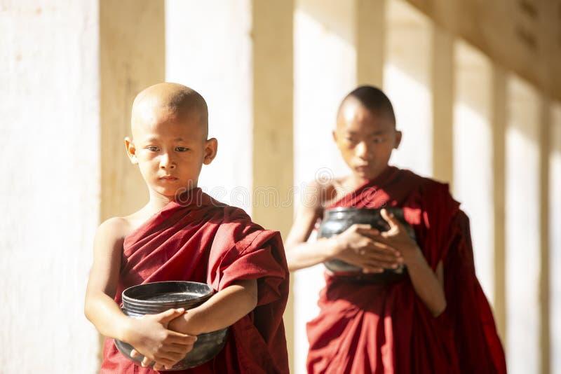 De boeddhismebeginners lopen met umberella in tempel stock fotografie