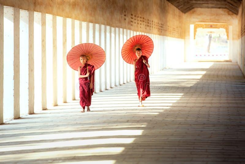 De boeddhismebeginners lopen met umberella in tempel stock afbeeldingen